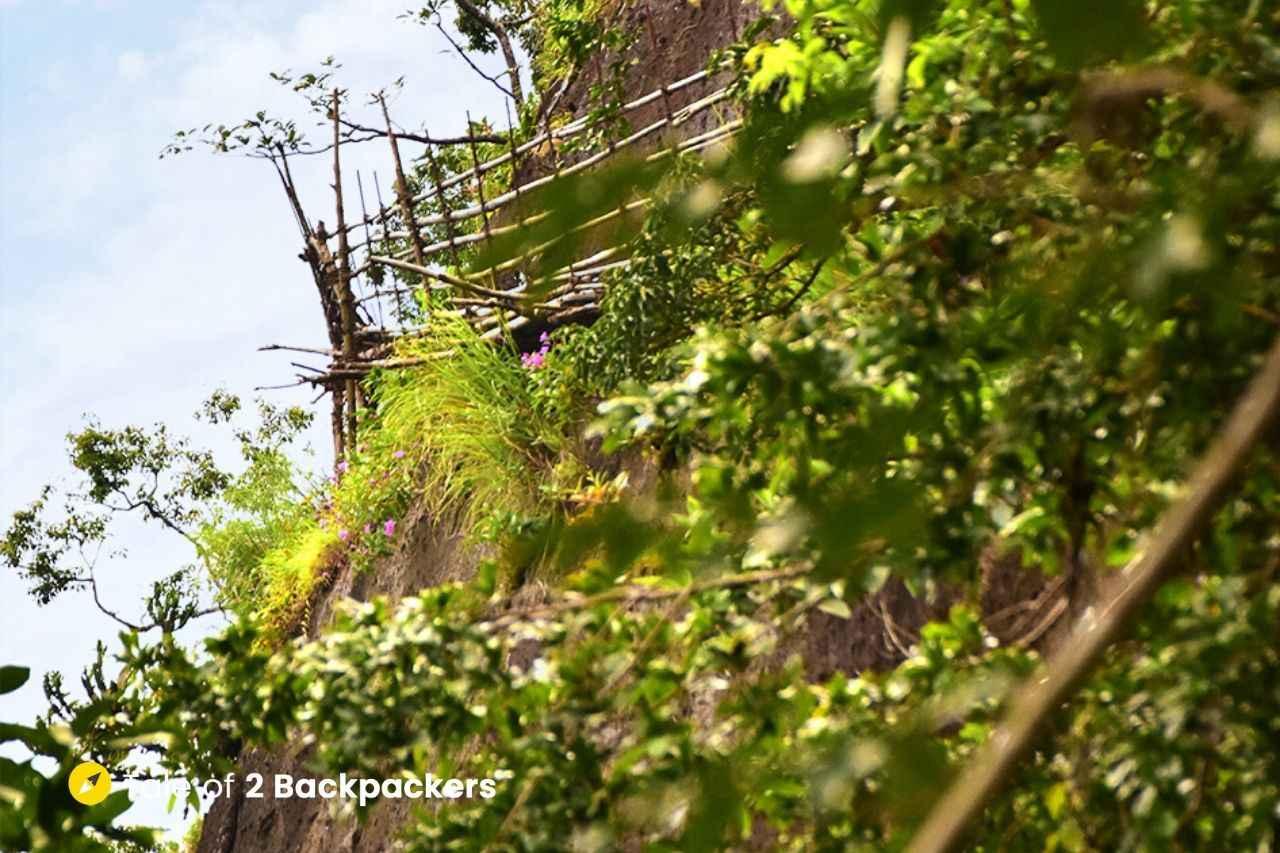 Bamboo skywalk at Mawryngkhang Trek Meghalaya