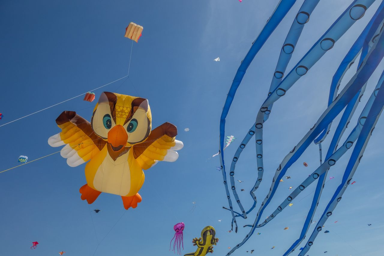 International Kite Festival in Ahmedabad
