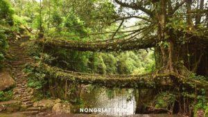 Nongriat Double Decker Root Bridge Trek