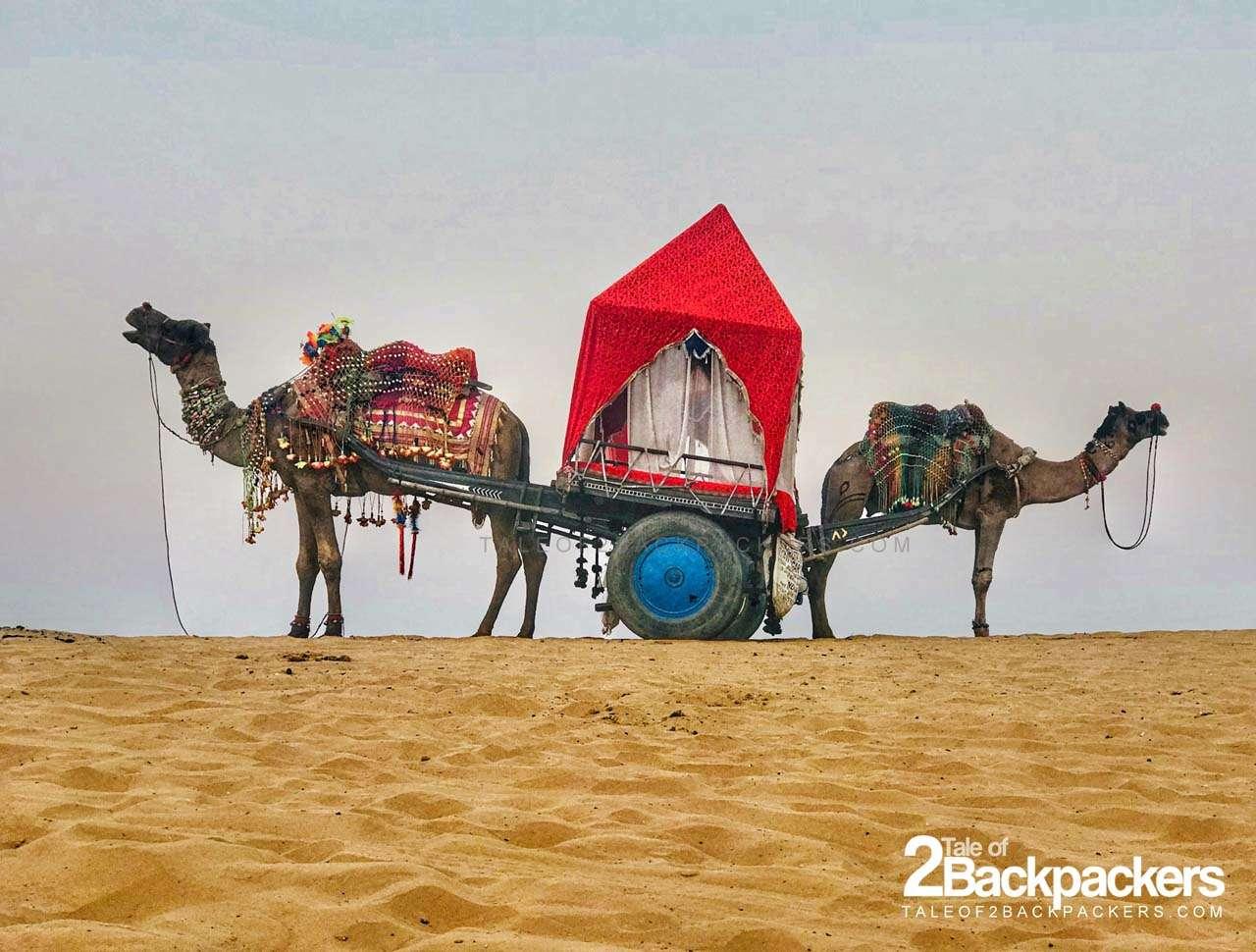 Pushkar Camel Fair in Rajasthan - Festivals in India