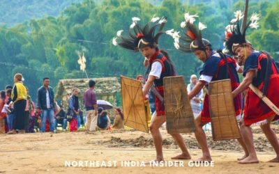 Best Northeast India Travel Guide – Things to Know Before You Go (FAQs Answered)
