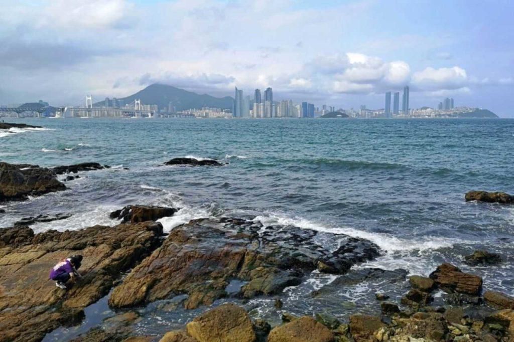 Igidae Coastal Walk - things to do in Busan