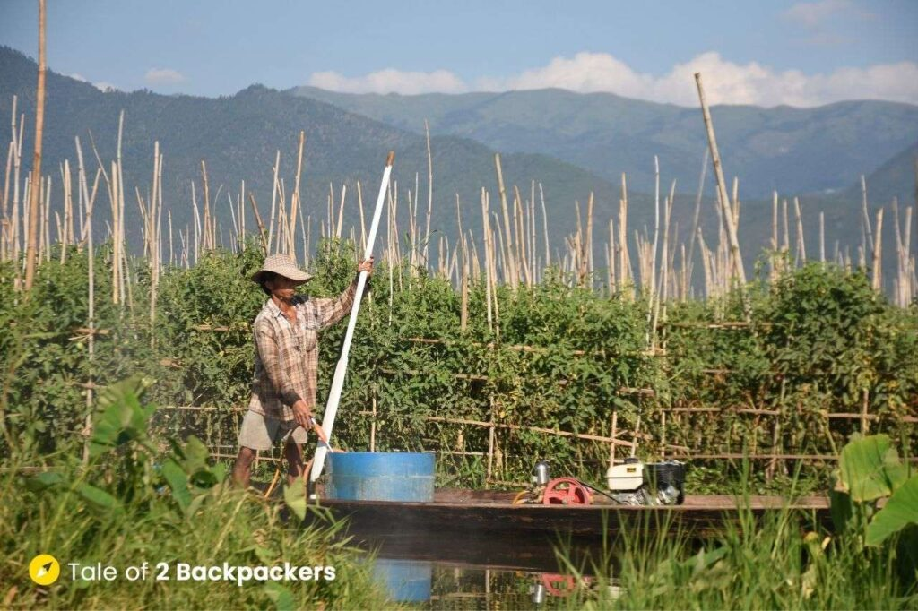 Inle lake floating gardens - things to do in Inle Lake