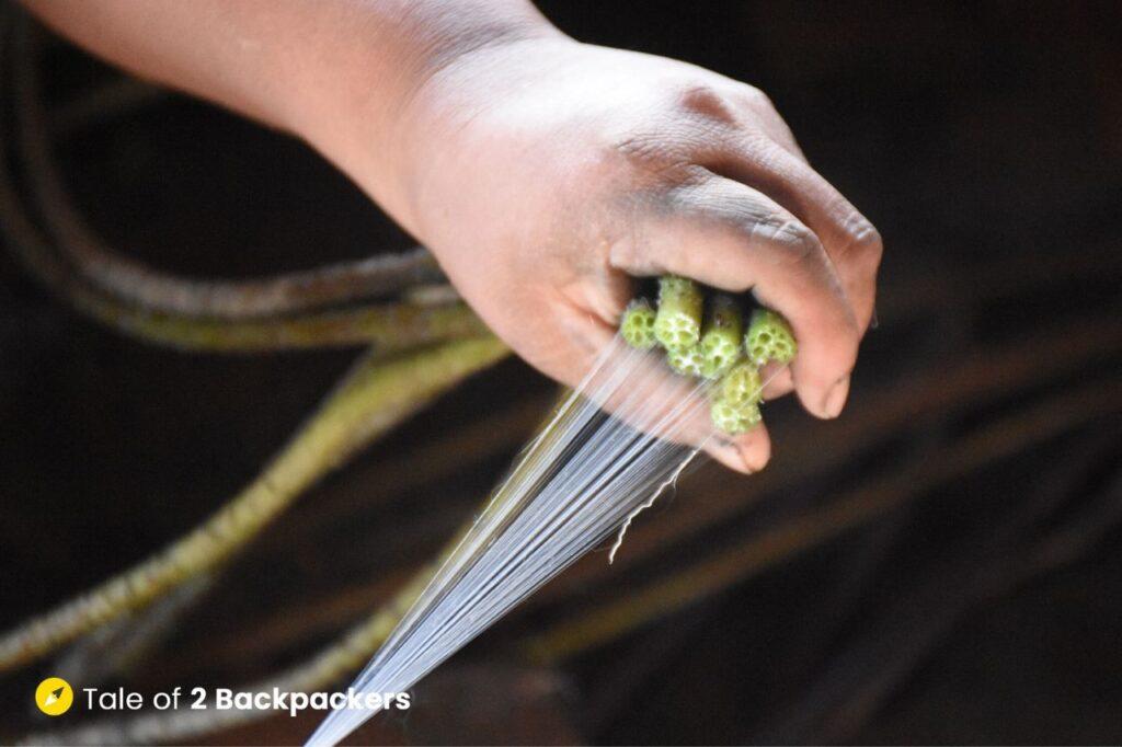 Making threads from lotus roots - Burmese lotus weaving at Inle Lake - Things to do in Inle Lake