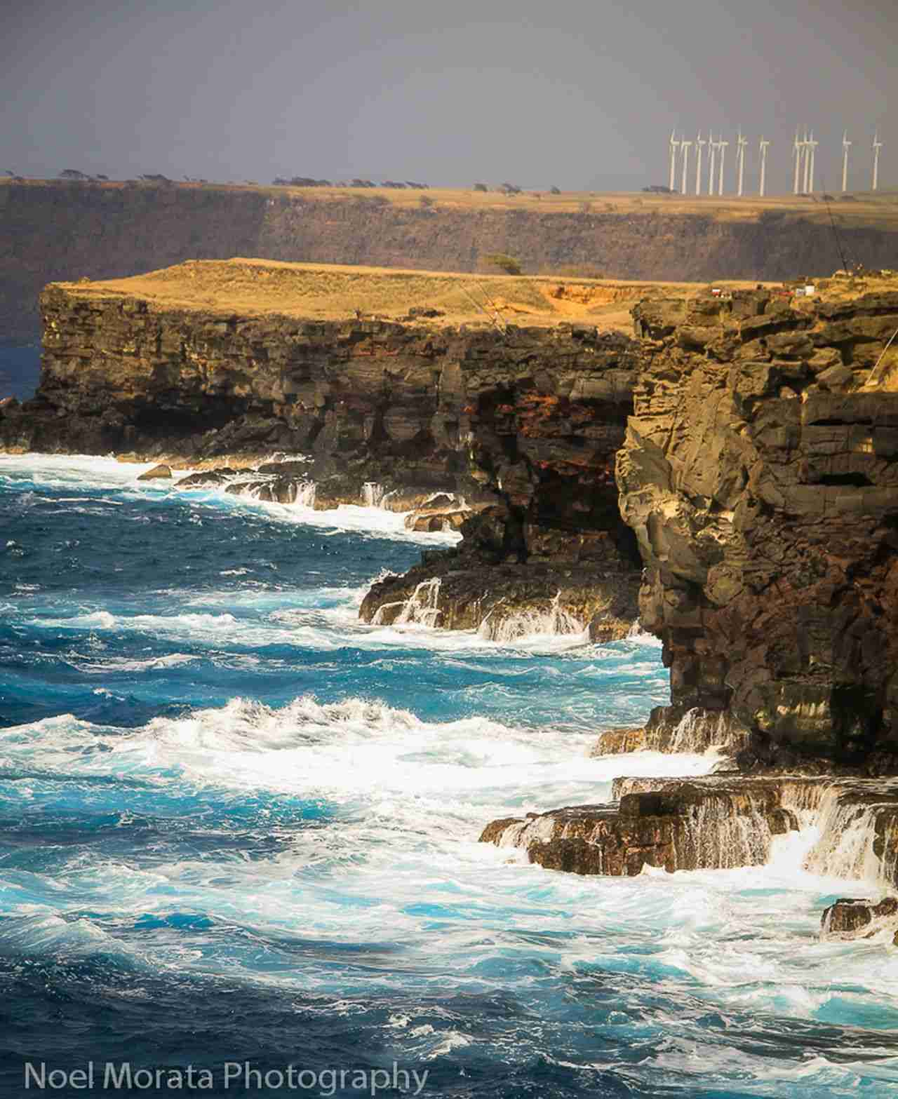 Wind Farm at Big Island Hawaii