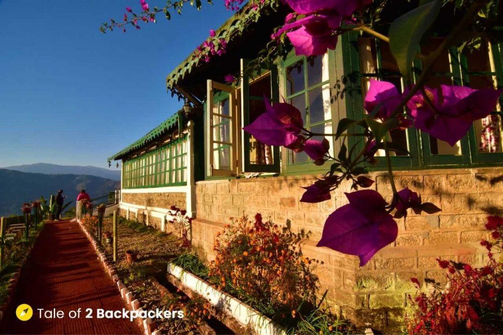 Cobbled pathway at Singtom Tea Estate and Resort Darjeeling