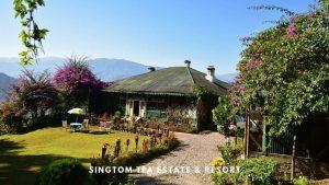 Singtom Tea Estate and Resort Darjeeling