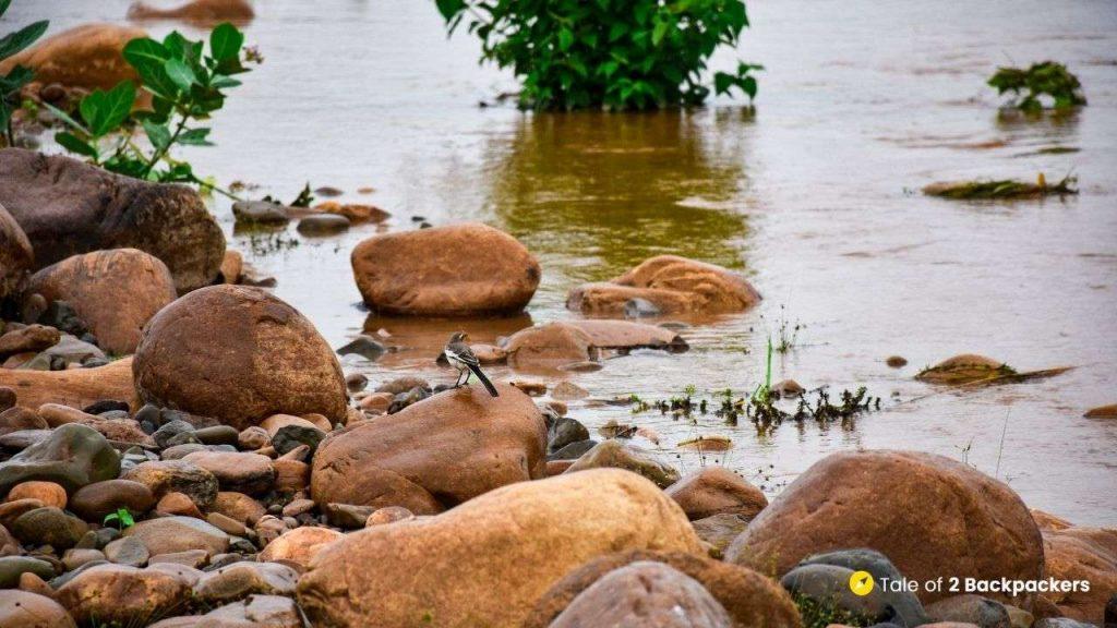 Buribalam River in Odisha