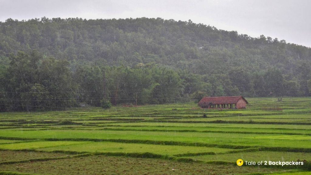 View of mountains and fields at Bangriposi