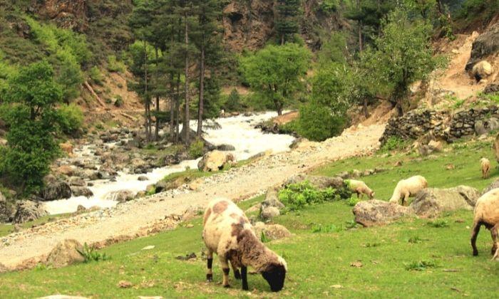 A Kashmiri village