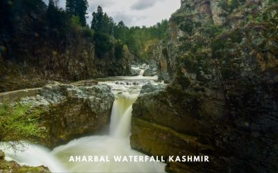 AHARBAL WATERFALL in Kashmir – A Complete Travel Guide