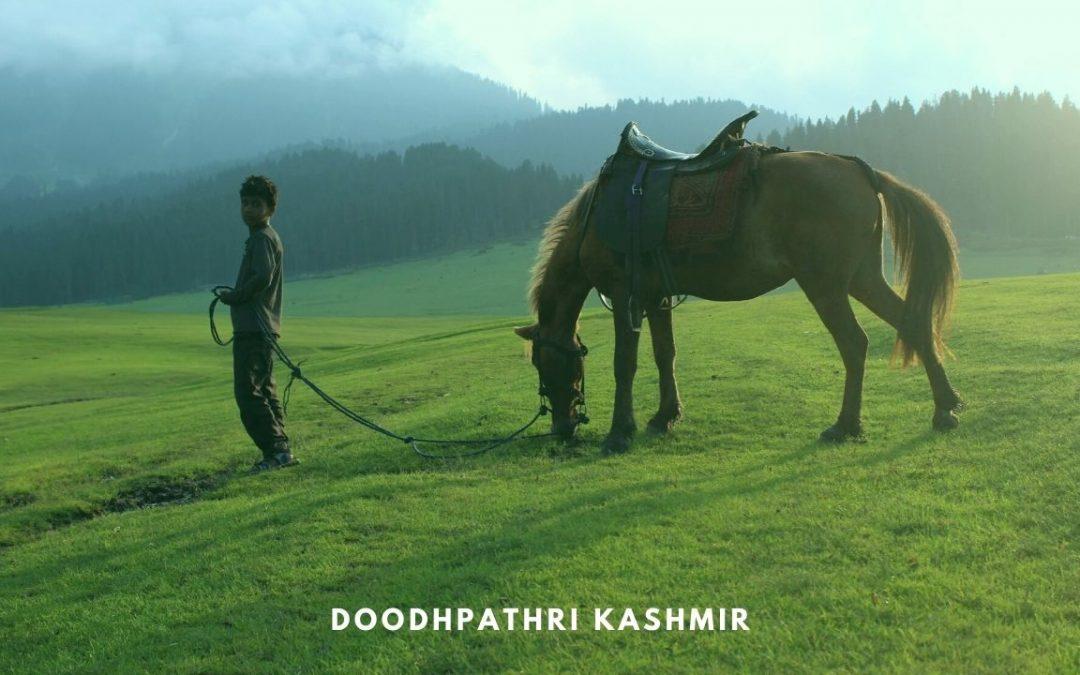 DOODHPATHRI, Trip to the Valley of Milk in Kashmir