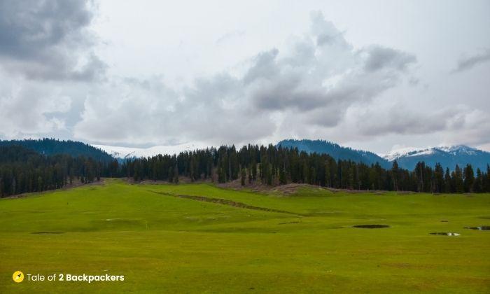 Meadows of Doodhpathri