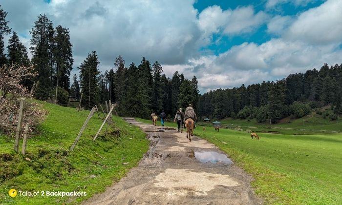 Trekking trail to Doodhganga and NilNag lake