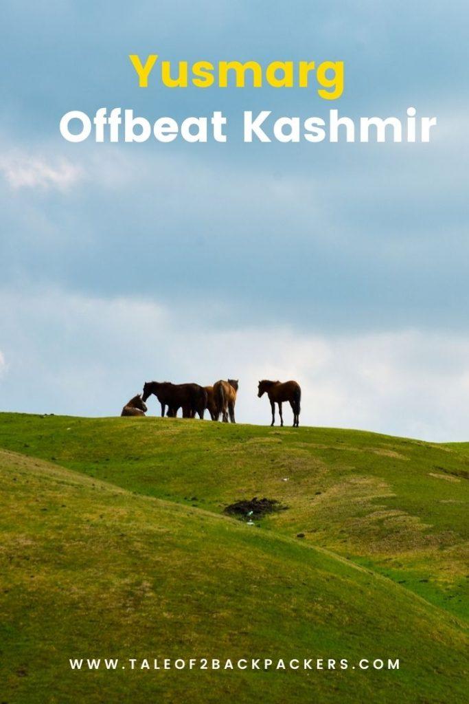 Yusmarg - Offbeat Kashmir