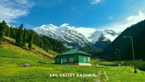 Aru Valley Travel Guide