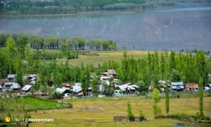Cultivation and encroachments on Wular