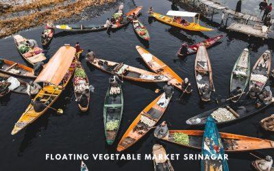 Floating Vegetable Market Srinagar – Sensory Overload at Dal Lake