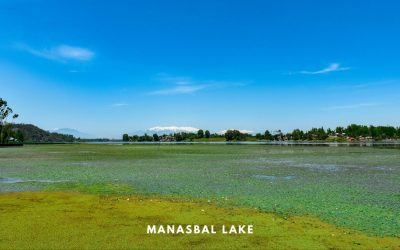 MANASBAL LAKE, KASHMIR – The Supreme Gem of Lakes in Kashmir