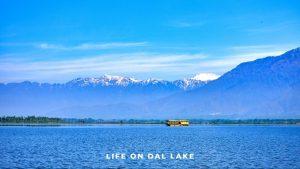 Life on Dal Lake